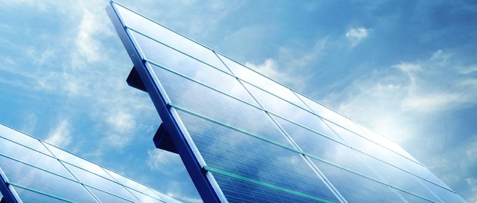 Taierea vegetatiei parcuri solare